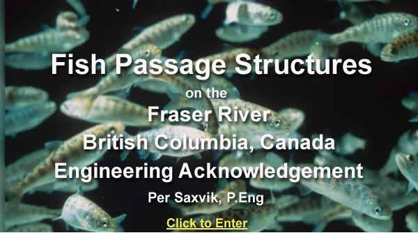 Fish Passage Structures